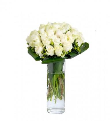 Beyaz Kuğu Beyaz Güller