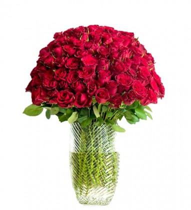 Büyülü Kırmızı Güller