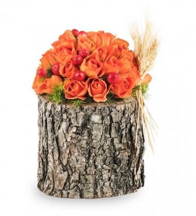Odun Kütükte Turuncu Çardak Gül